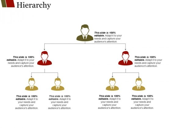 Hierarchy Ppt PowerPoint Presentation Portfolio Graphics Example