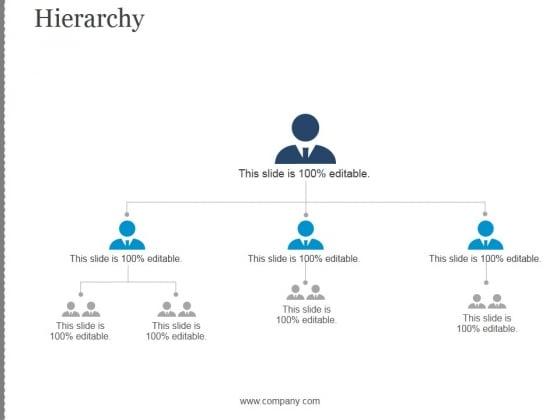 Hierarchy Ppt PowerPoint Presentation Portfolio