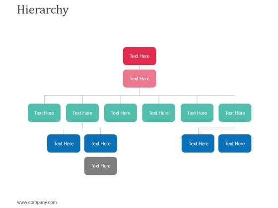 Hierarchy Ppt Powerpoint Presentation Slides Graphics