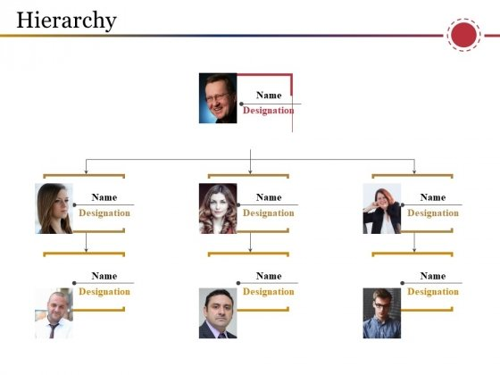 Hierarchy Ppt PowerPoint Presentation Styles Slide Portrait