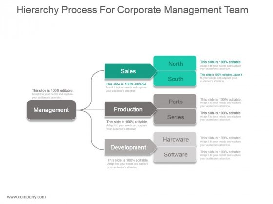 Hierarchy Process For Corporate Management Team Ppt Slide