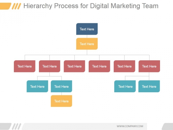 Hierarchy Process For Digital Marketing Team Ppt PowerPoint Presentation Example File
