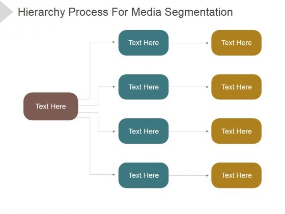 Hierarchy Process For Media Segmentation Ppt PowerPoint Presentation Guidelines