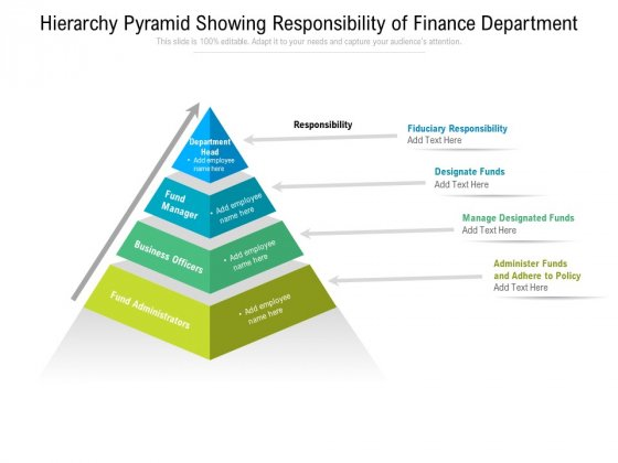 Hierarchy Pyramid Showing Responsibility Of Finance Department Ppt PowerPoint Presentation Gallery Graphic Images PDF
