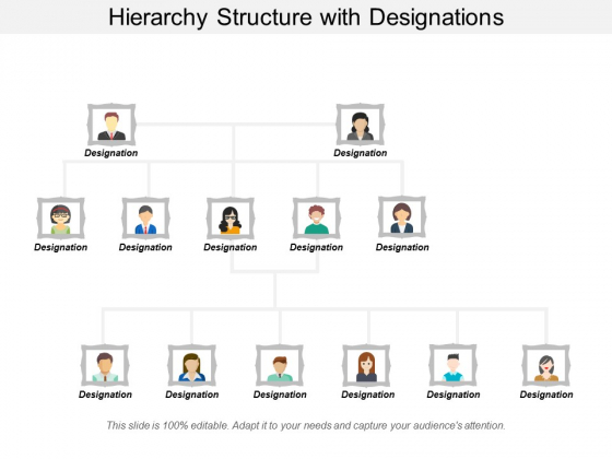 Hierarchy Structure With Designations Ppt PowerPoint Presentation Gallery Format Ideas