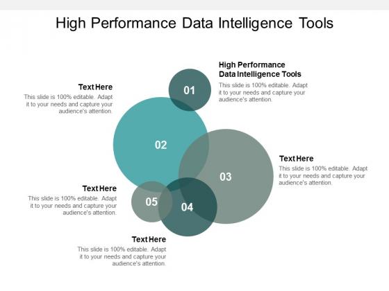 High Performance Data Intelligence Tools Ppt PowerPoint Presentation Icon Skills Cpb