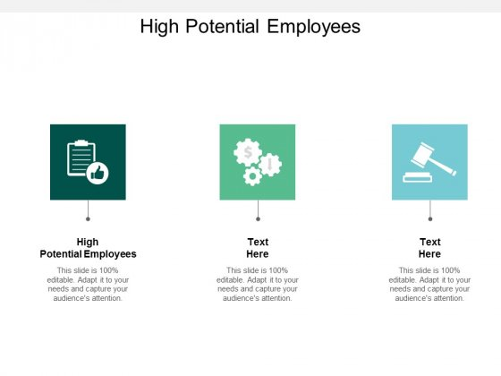 High Potential Employees Ppt PowerPoint Presentation Show Background Cpb