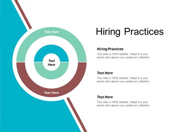 Hiring Practices Ppt PowerPoint Presentation Gallery Designs Cpb
