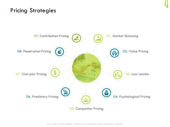 Hotel_Management_Plan_Pricing_Strategies_Professional_PDF_Slide_1