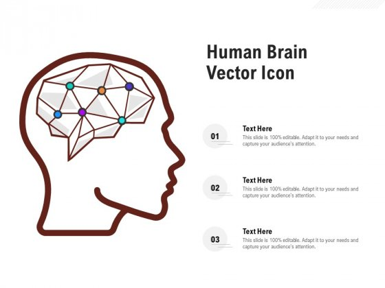 Human Brain Vector Icon Ppt PowerPoint Presentation Styles Aids