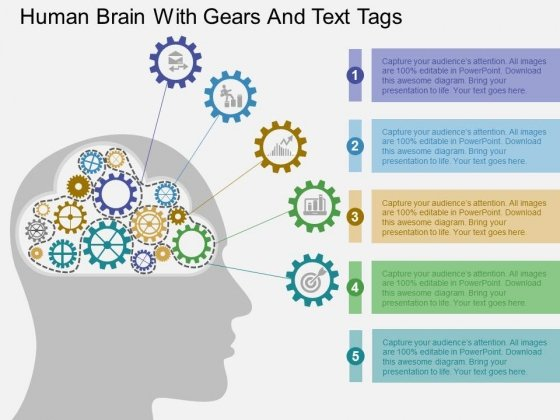 Human Brain With Gears And Text Tags Powerpoint Templates