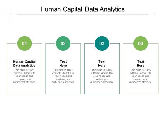 Human Capital Data Analytics Ppt PowerPoint Presentation File Model Cpb