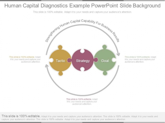 Human Capital Diagnostics Example Powerpoint Slide Background