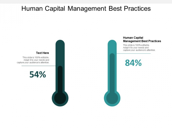 Human Capital Management Best Practices Ppt Powerpoint Presentation Slides Clipart Cpb