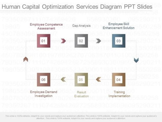 Human Capital Optimization Services Diagram Ppt Slides