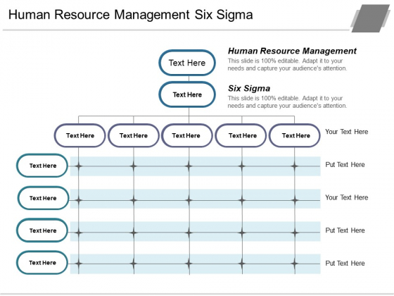Human Resource Management Six Sigma Ppt PowerPoint Presentation Show Format