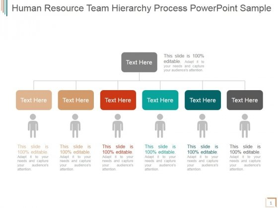Human Resource Team Hierarchy Process Ppt PowerPoint Presentation Template