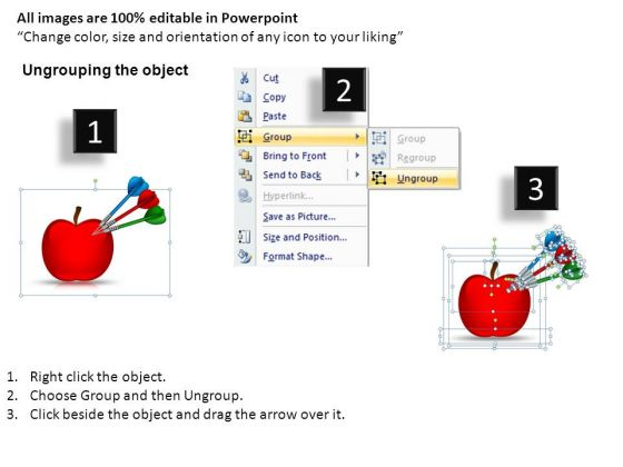 health_targets_1_powerpoint_slides_and_ppt_diagram_templates_2