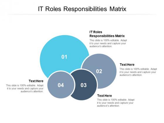 IT Roles Responsibilities Matrix Ppt PowerPoint Presentation Summary Diagrams Cpb Pdf