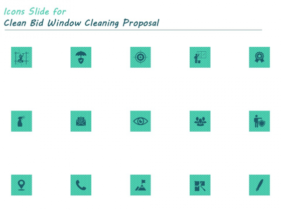 Icons Slide For Clean Bid Window Cleaning Proposal Ppt Summary Structure PDF