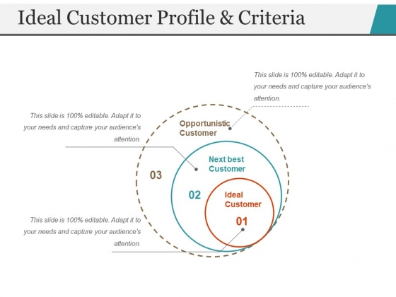 Ideal Customer Profile And Criteria Ppt PowerPoint Presentation Gallery Demonstration