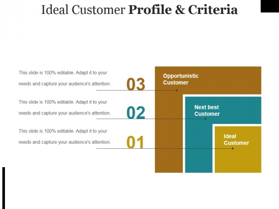 Ideal Customer Profile And Criteria Ppt PowerPoint Presentation Summary Mockup