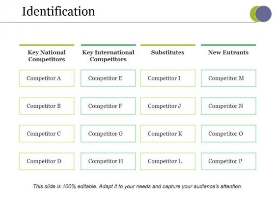 Identification Ppt PowerPoint Presentation Infographics Vector