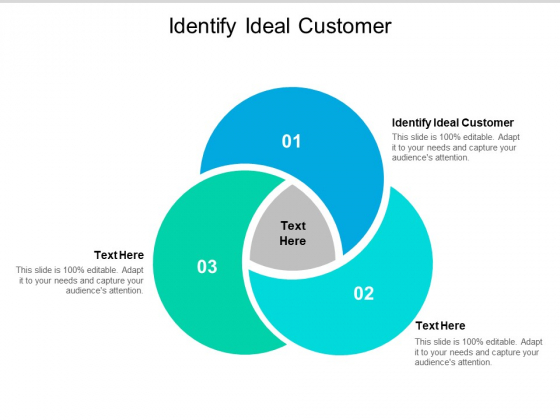 Identify Ideal Customer Ppt PowerPoint Presentation Show Background Image Cpb
