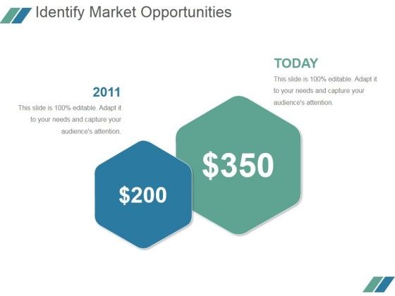 Identify Market Opportunities Ppt PowerPoint Presentation Guidelines