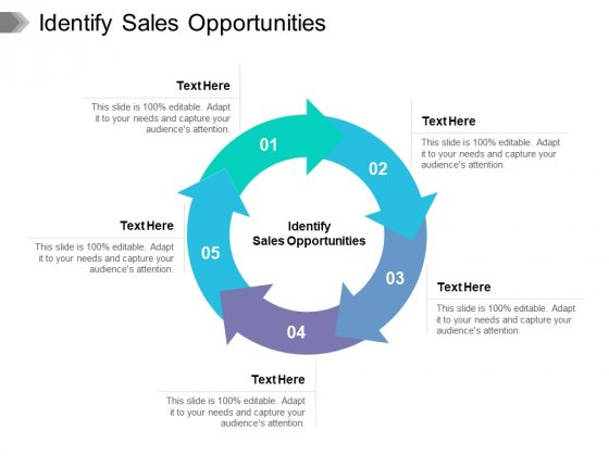 Identify Sales Opportunities Ppt PowerPoint Presentation File Infographics Cpb Pdf