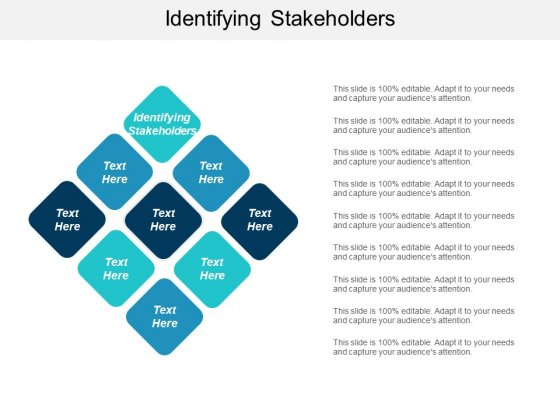 Identifying Stakeholders Ppt PowerPoint Presentation Infographic Template Structure Cpb