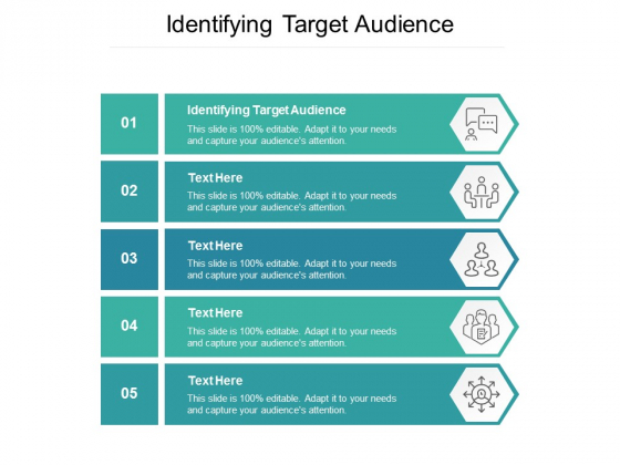 Identifying Target Audience Ppt PowerPoint Presentation Layouts Example Cpb