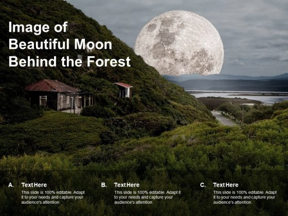 Image Of Beautiful Moon Behind The Forest Ppt PowerPoint Presentation Show Graphic Images
