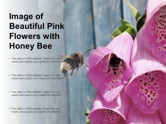 Image Of Beautiful Pink Flowers With Honey Bee Ppt PowerPoint Presentation Pictures Graphics Design