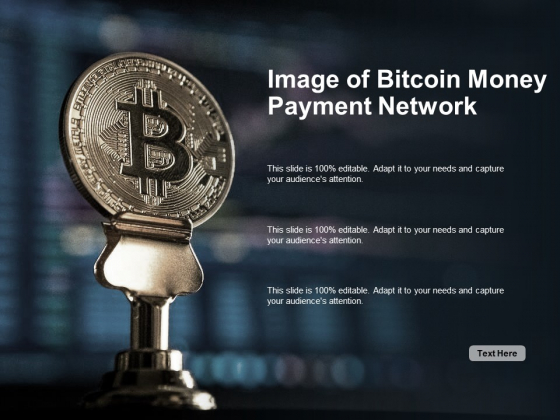 Image Of Bitcoin Money Payment Network Ppt PowerPoint Presentation Professional Example Introduction
