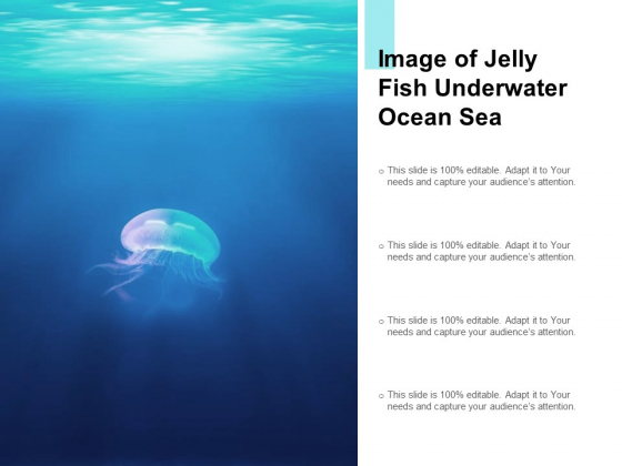 Image Of Jelly Fish Underwater Ocean Sea Ppt PowerPoint Presentation Infographic Template Deck