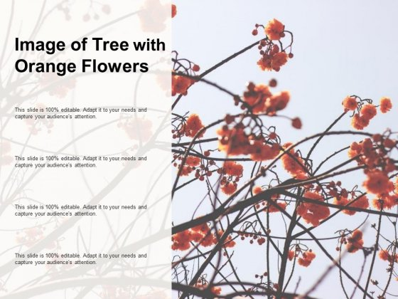 Image Of Tree With Orange Flowers Ppt PowerPoint Presentation Outline Rules