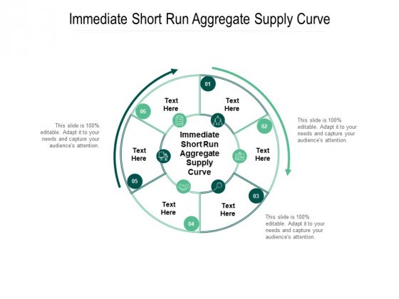 Immediate Short Run Aggregate Supply Curve Ppt PowerPoint Presentation Model Graphics Cpb Pdf