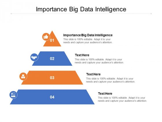 Importance Big Data Intelligence Ppt PowerPoint Presentation Infographics Smartart Cpb