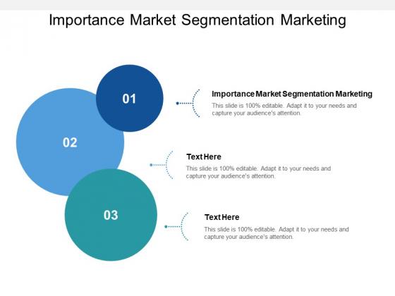 Importance Market Segmentation Marketing Ppt PowerPoint Presentation Pictures Inspiration Cpb