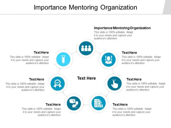 Importance Mentoring Organization Ppt PowerPoint Presentation Summary Model Cpb
