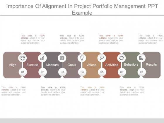 Importance Of Alignment In Project Portfolio Management Ppt Example