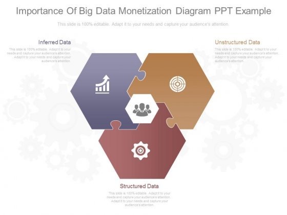 Importance Of Big Data Monetization Diagram Ppt Example