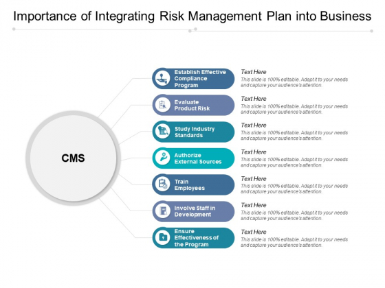 Importance Of Integrating Risk Management Plan Into Business Ppt PowerPoint Presentation File Background Images PDF