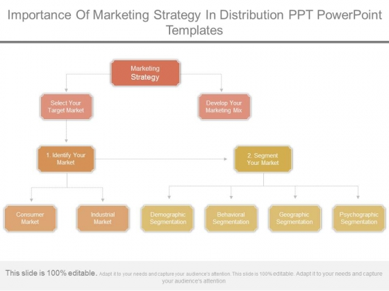 Importance Of Marketing Strategy In Distribution Ppt Powerpoint Templates