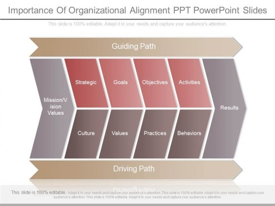 Importance Of Organizational Alignment Ppt Powerpoint Slides