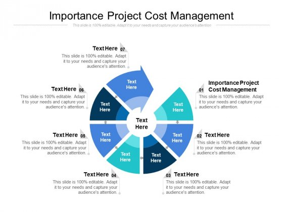Importance Project Cost Management Ppt PowerPoint Presentation Outline Samples Cpb