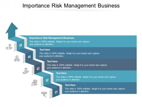 Importance Risk Management Business Ppt PowerPoint Presentation Gallery Graphics Example Cpb