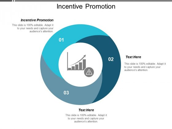 Incentive Promotion Ppt PowerPoint Presentation Outline Cpb