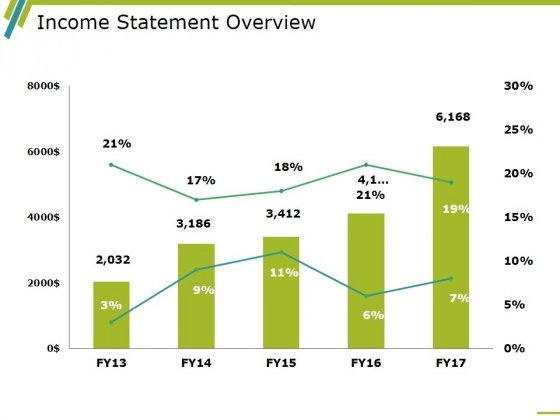 Income Statement Overview Ppt PowerPoint Presentation Model Example